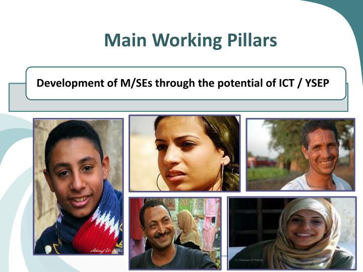 Main Working Pillars