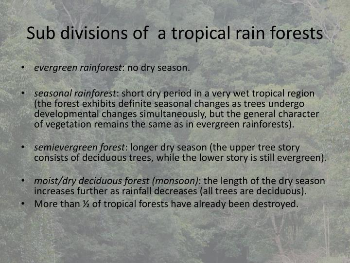 Sub divisions of  a tropical rain forests