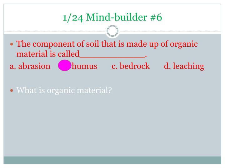 1/24 Mind-builder #6