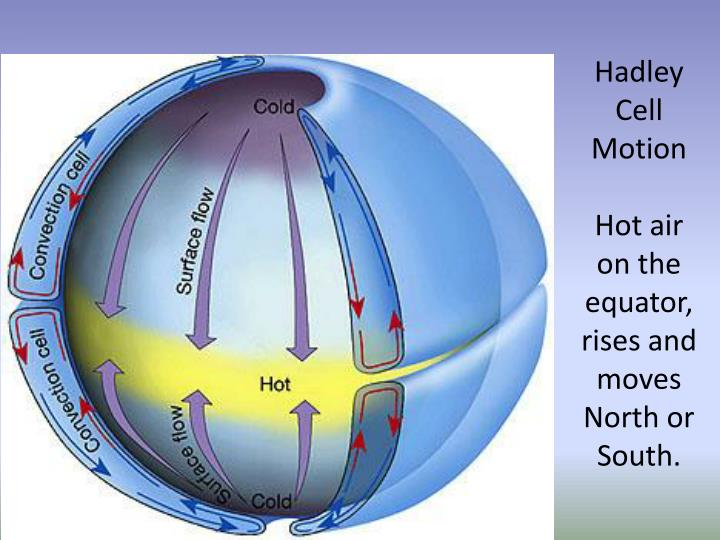 Hadley Cell Motion
