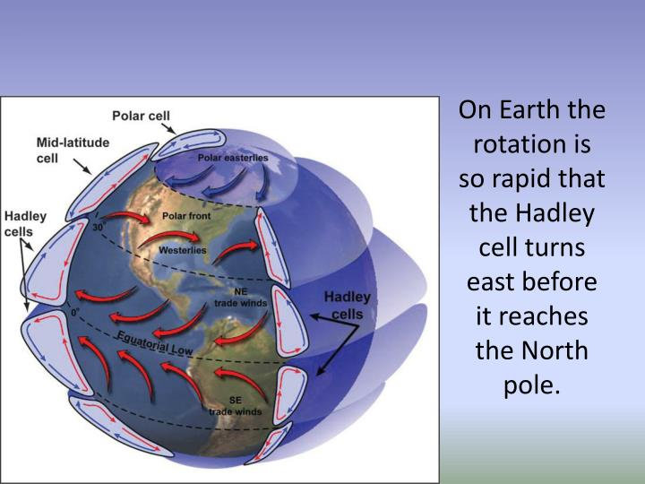 On Earth the rotation is so rapid that the Hadley cell turns east before it reaches the North pole.