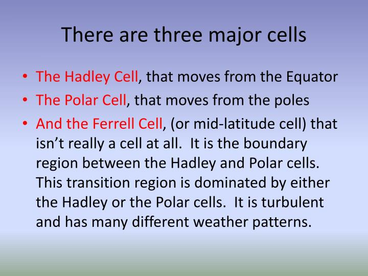 There are three major cells