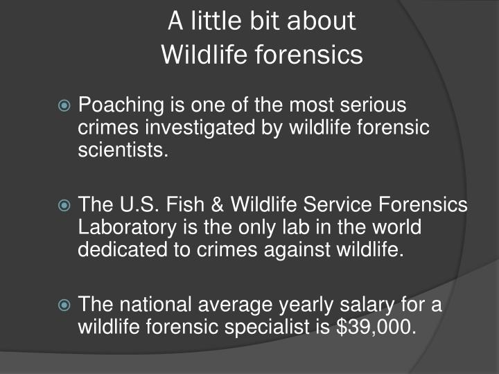 A little bit about wildlife forensics