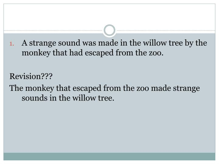 A strange sound was made in the willow tree by the monkey that had escaped from the zoo.