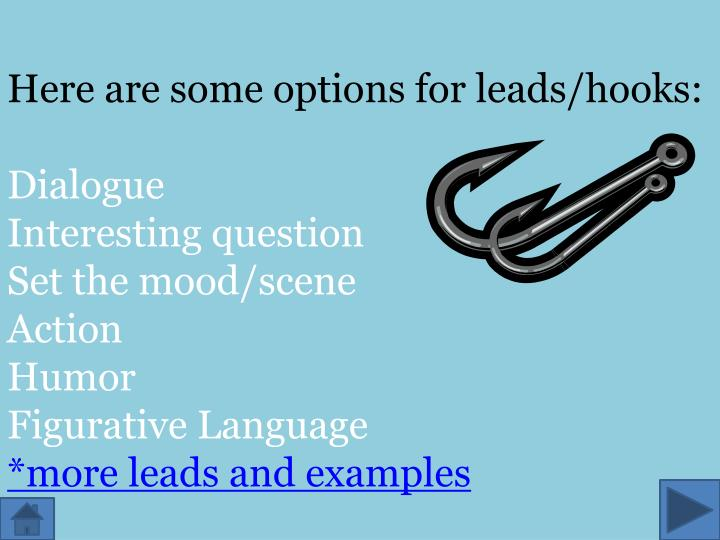 Here are some options for leads/hooks: