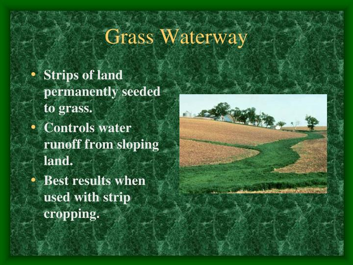 Grass Waterway