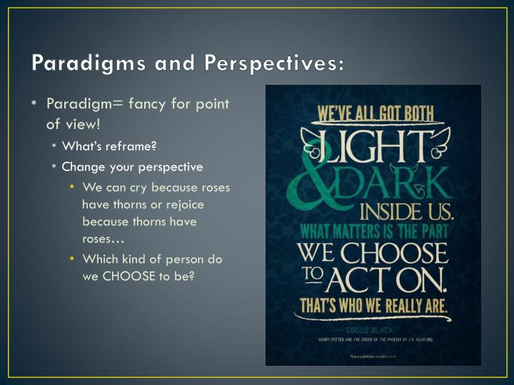 Paradigms and Perspectives: