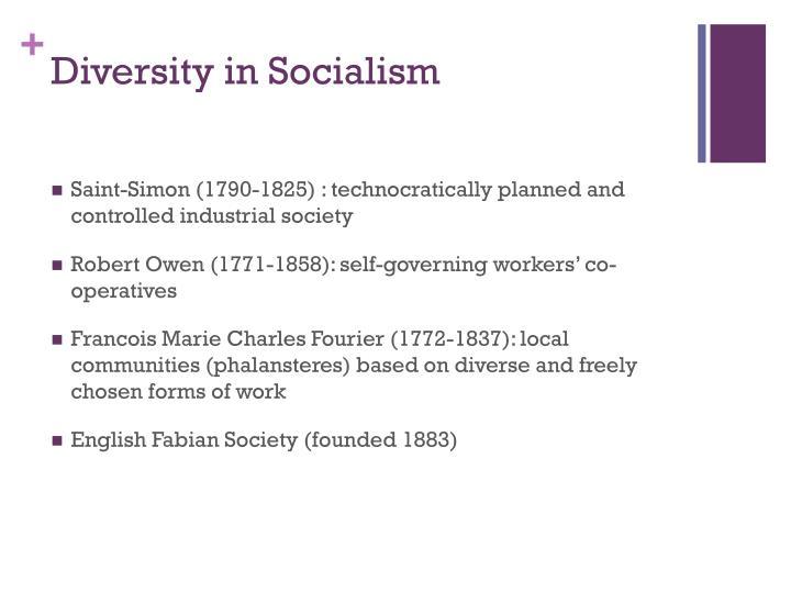 Diversity in Socialism