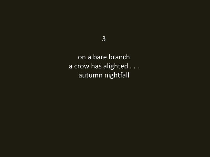3 on a bare branch a crow has alighted autumn nightfall