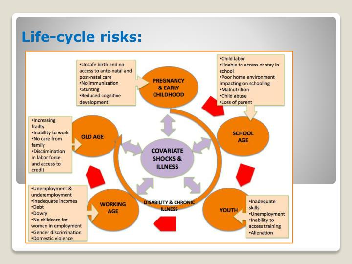 Life-cycle risks: