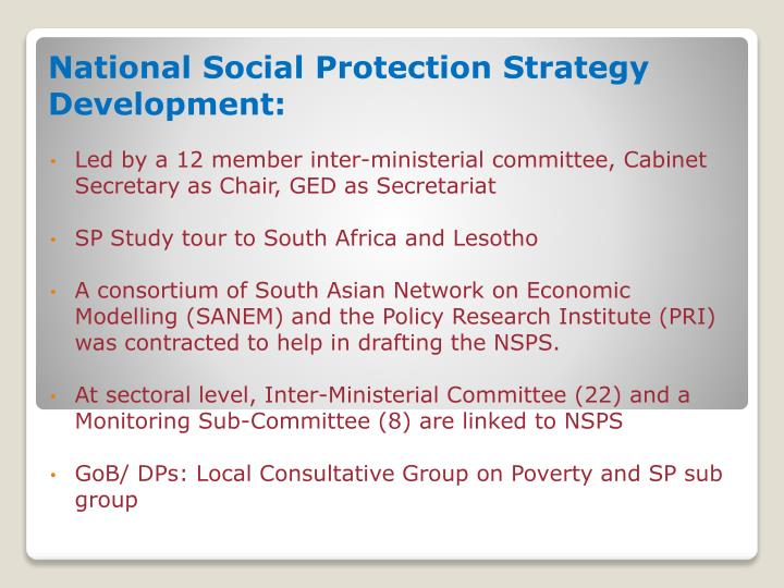 National Social Protection Strategy Development: