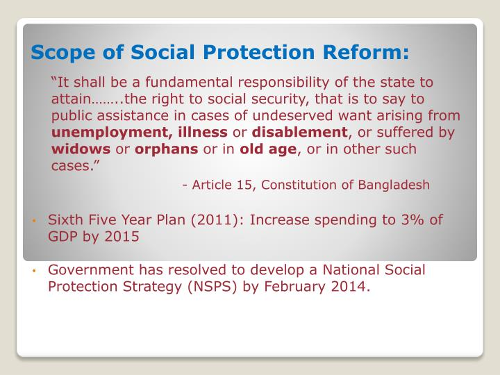 Scope of Social Protection Reform: