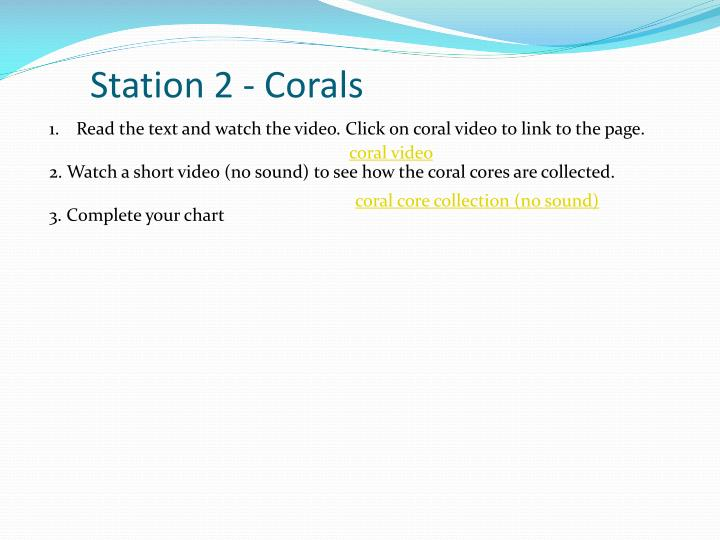 Station 2 - Corals