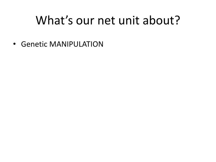 What's our net unit about?