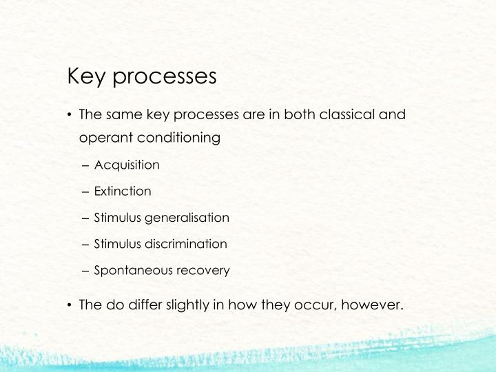 Key processes