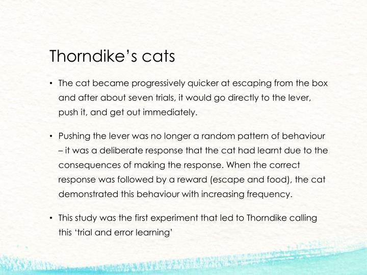 Thorndike's cats