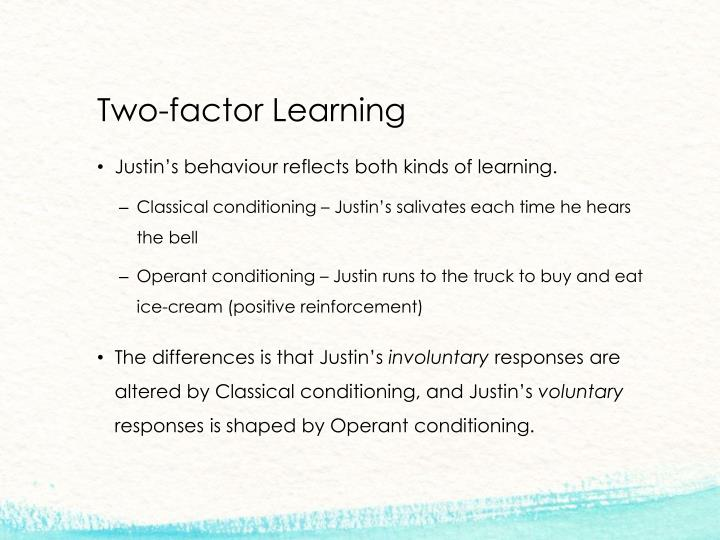 Two-factor Learning