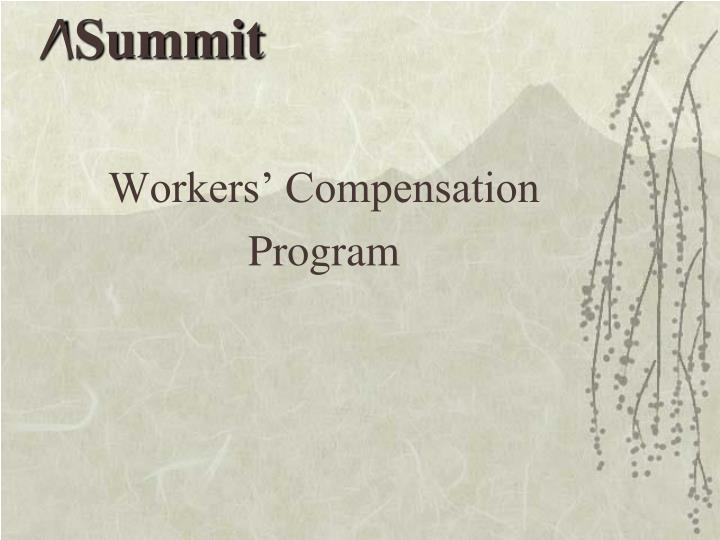Workers compensation program