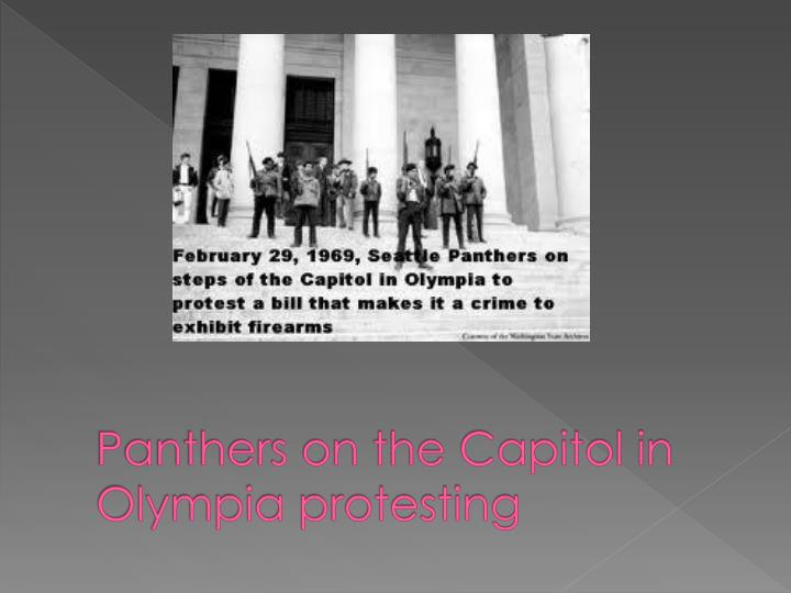 Panthers on the Capitol in Olympia protesting