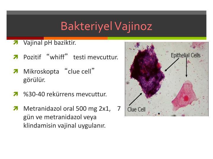 Bakteriyel
