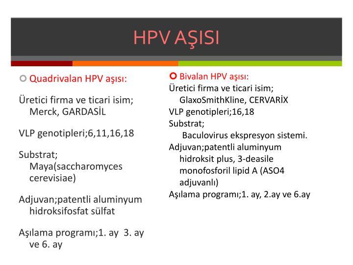 HPV AŞISI