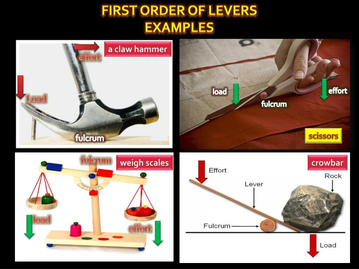 Examples Of Levers : Ppt three types of lever powerpoint presentation id