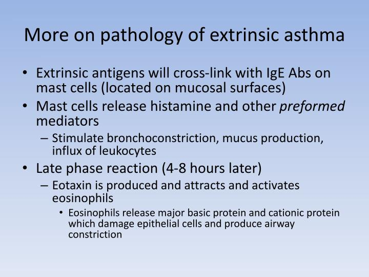 More on pathology of extrinsic asthma