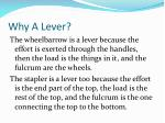 why a lever1