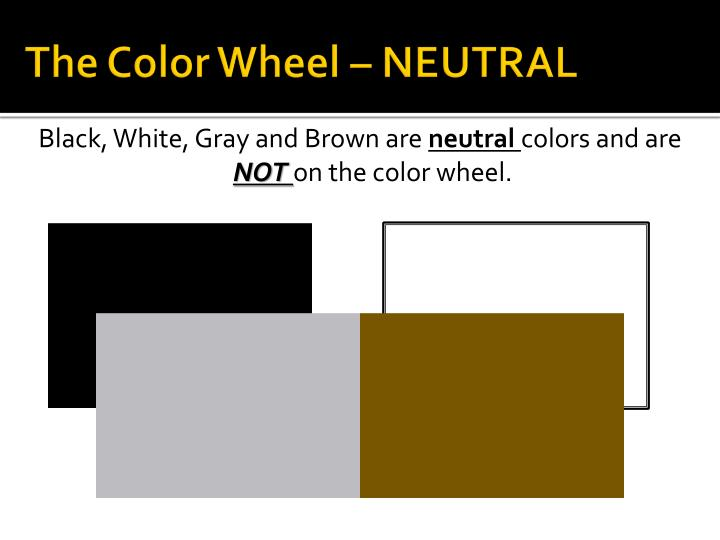 The Color Wheel – NEUTRAL