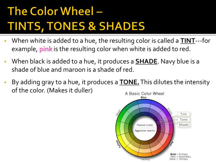 The Color Wheel –
