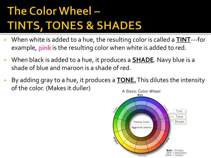 The Color Wheel –