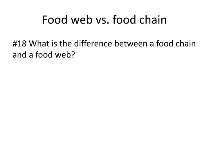 Food web vs. food chain