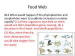 food web10