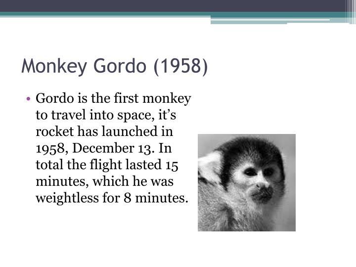 Monkey Gordo (1958)