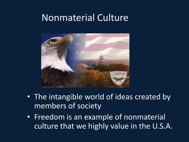 Nonmaterial Culture