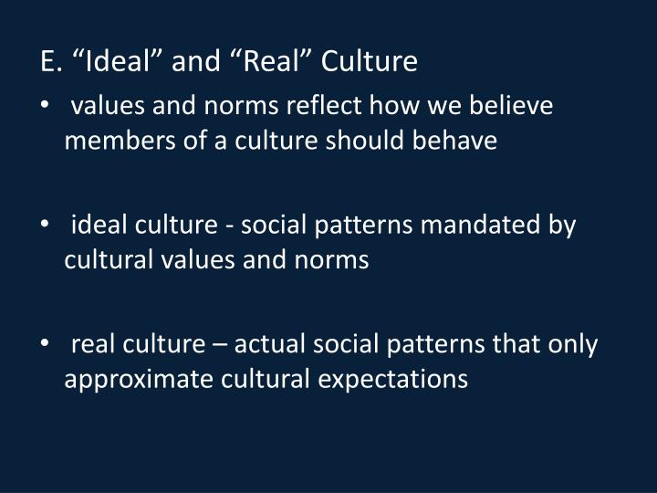 "E. ""Ideal"" and ""Real"" Culture"