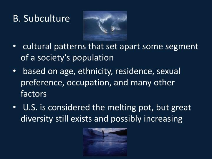 B. Subculture
