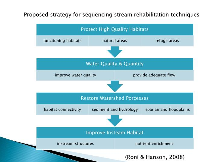 Proposed strategy for sequencing stream rehabilitation techniques