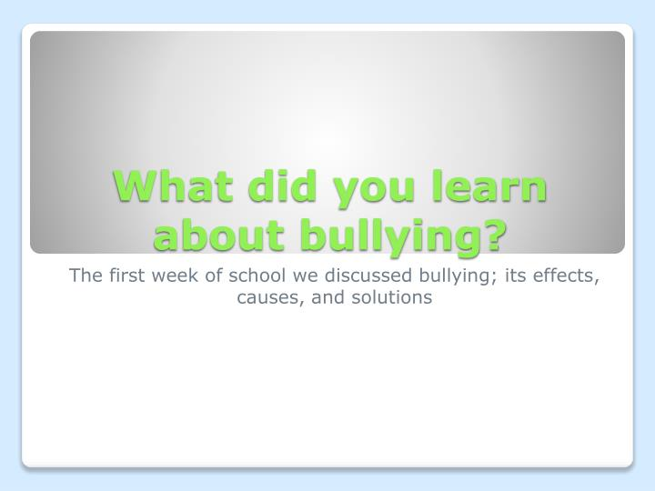 What did you learn about bullying?