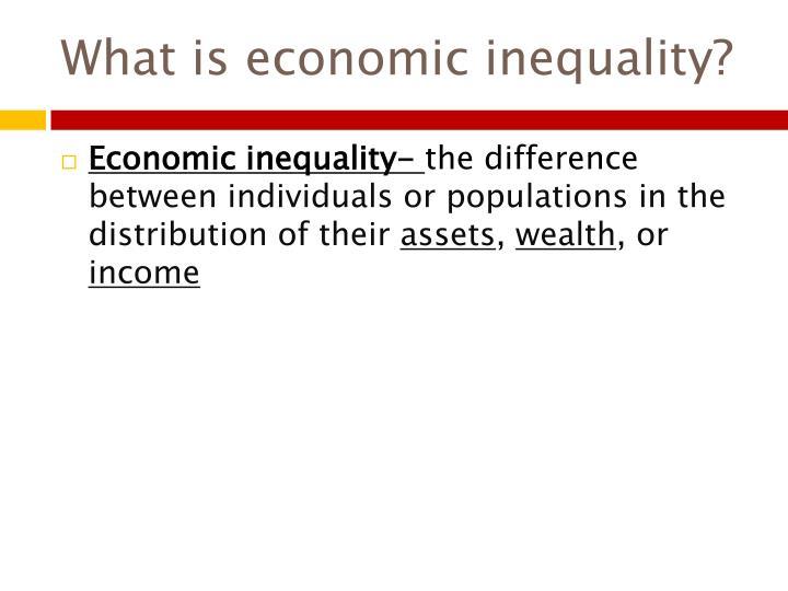 What is economic inequality?