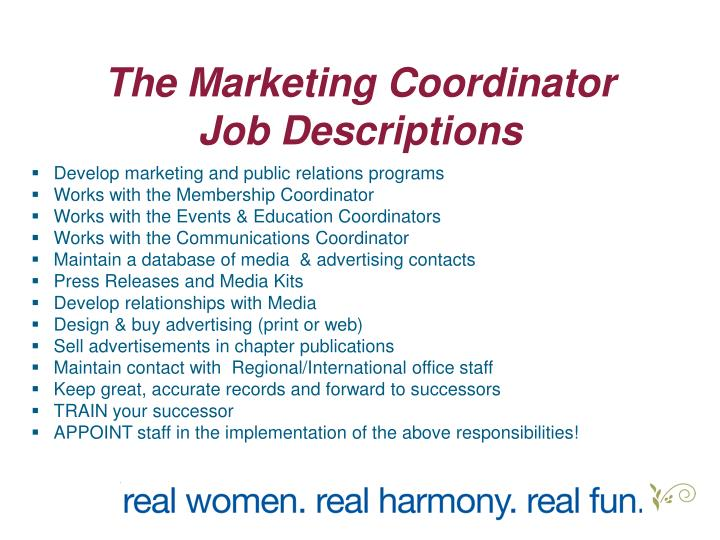 The Marketing Coordinator