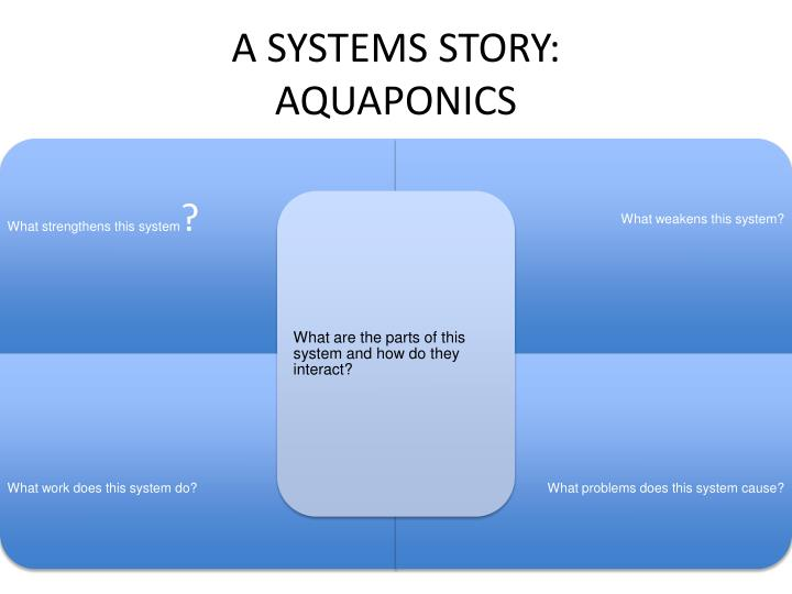 A SYSTEMS STORY: