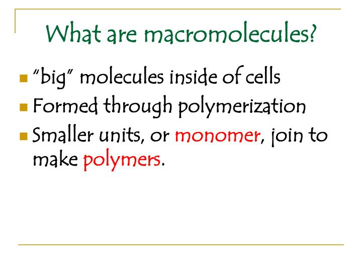 What are macromolecules?