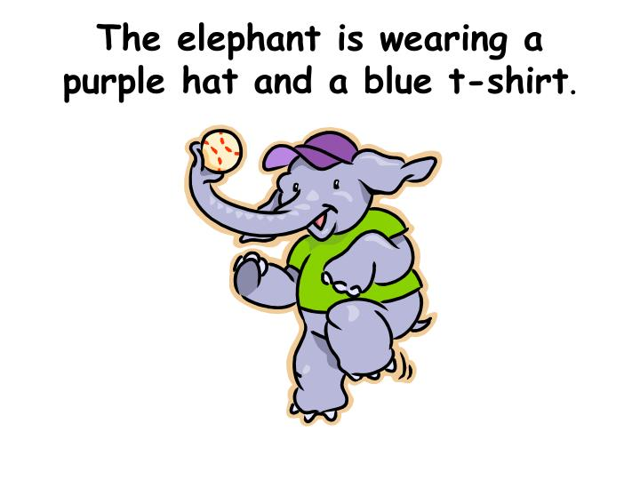 The elephant is wearing a purple hat and a blue t-shirt