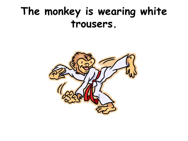The monkey is wearing white trousers