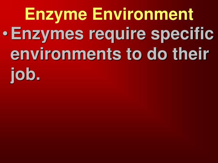 Enzyme Environment