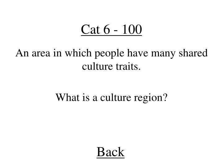 Cat 6 - 100