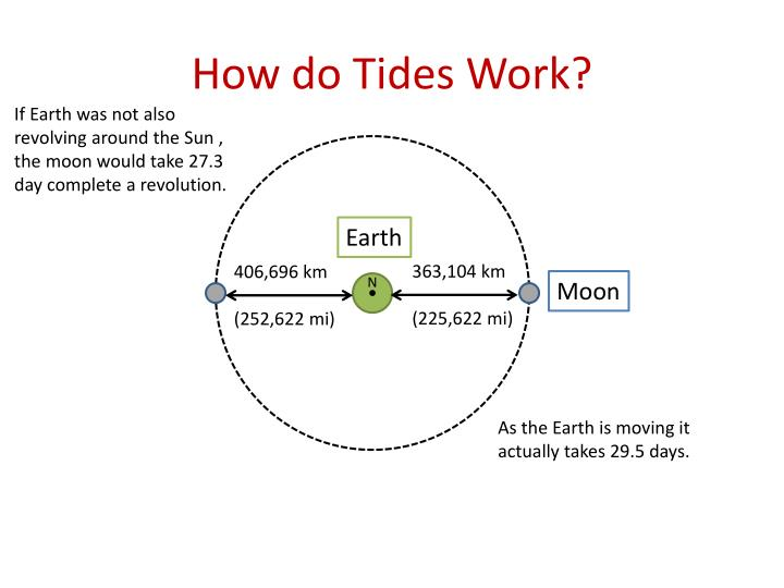 How do Tides Work?