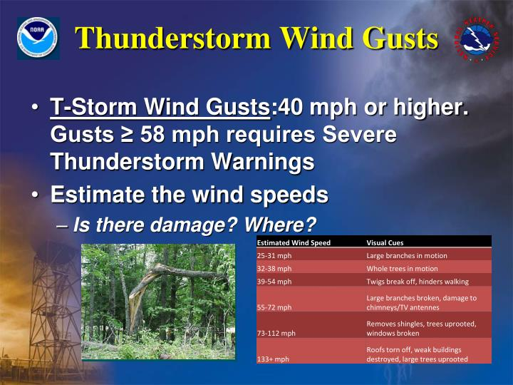 Thunderstorm Wind Gusts