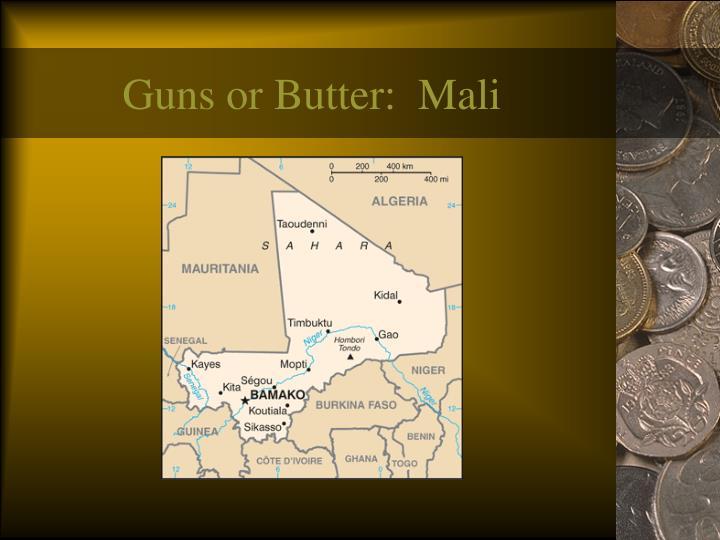Guns or Butter:  Mali
